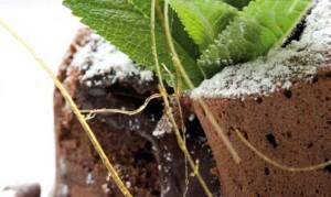 sjokolade-fondant-