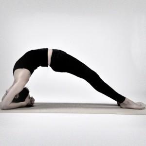 Yogainstruktørsilje