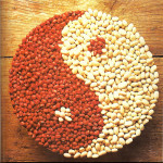 yin-foods-and-yang-foods