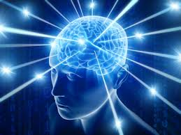 hjernebølger