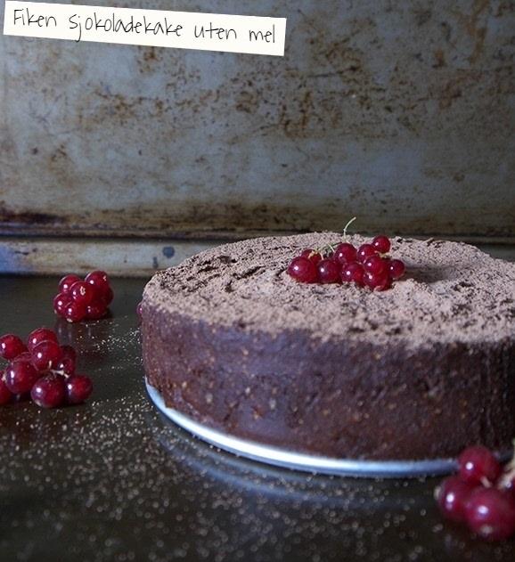 fikensjokoladekake2