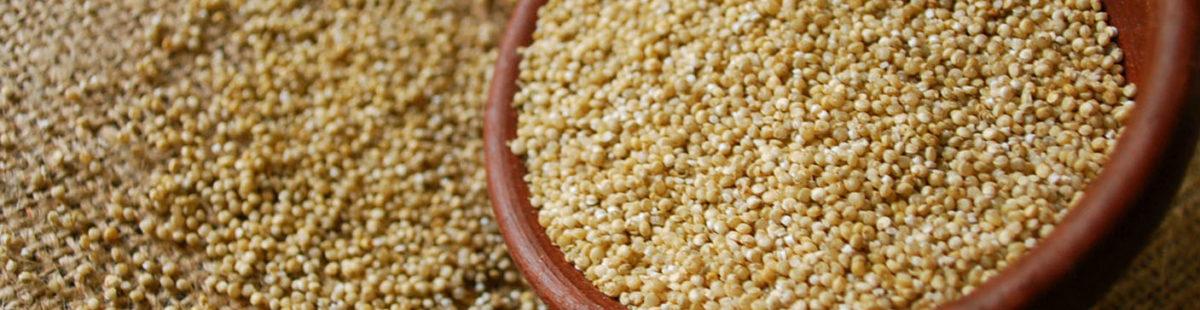 Quinoa- som salat eller tilbehør