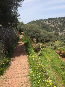 Vandring Mallorca