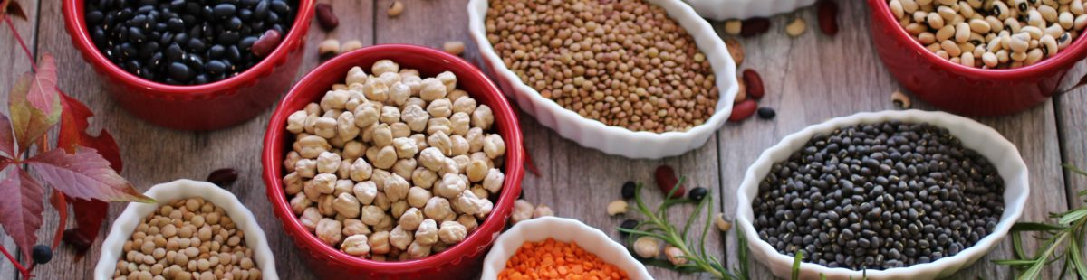 Belgvekster- the future of food!