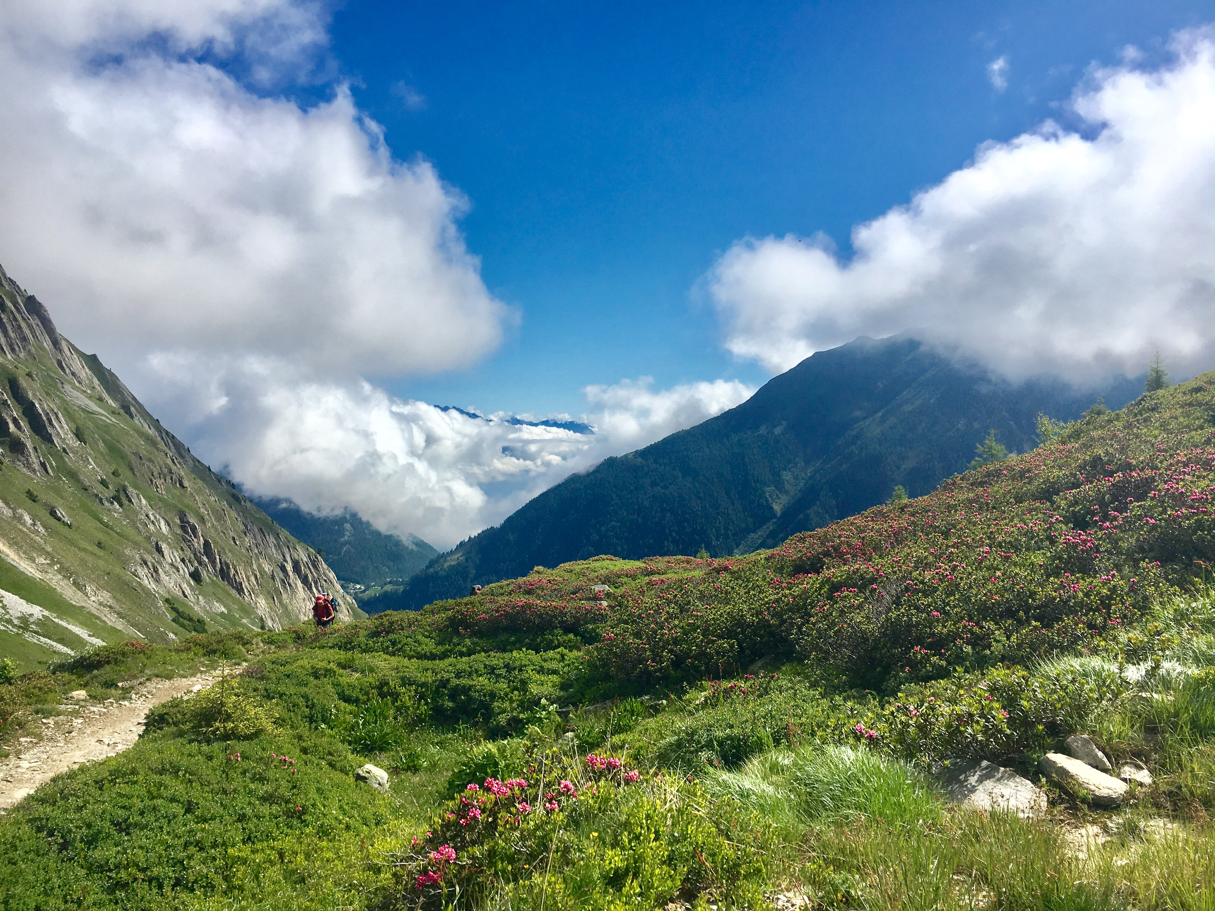 You are currently viewing Ny vandringsreise 2018! Tour Mont Blanc