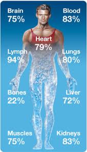 kroppen inneholder vann