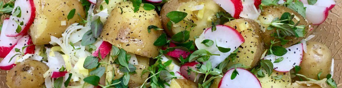 Potetsalat med oregano og reddik